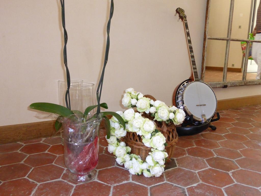 Le banjo au domaine de Boissy-le-Bois